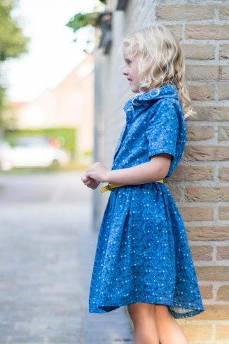 Hanne WWD Collared Dress-0039